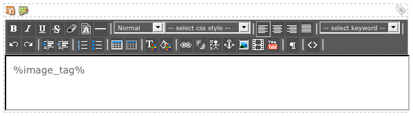 The WYSIWYG Editor on the Image Format Bodycopy