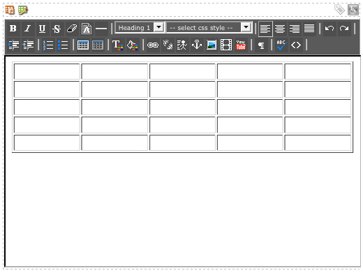 An example table in the WYSIWYG Editor