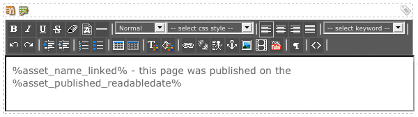 The WYSIWYG Editor on the Default Format Bodycopy