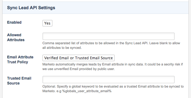 The Sync Lead API Settings section of the Details screen