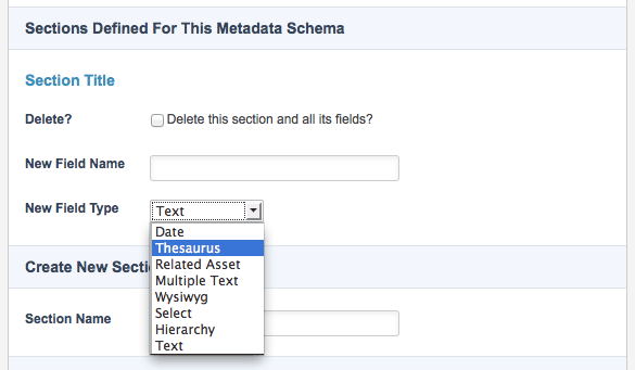 5-0-0_thesaurus-selection-new-field-type-field.png