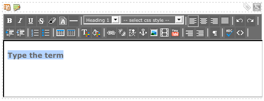 Insert the definition term into the WYSIWYG Editor