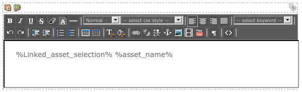 The WYSIWYG Editor on the Default Format Bodycopy