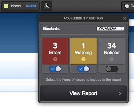 The Accessibility Auditor in Preview Mode