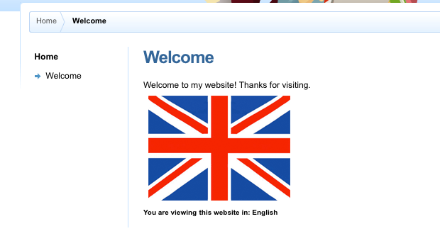 The English version of the Site