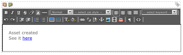 The WYSIWYG Editor on the Created Bodycopy