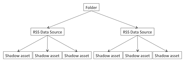 The structure of Shadow Assets within the system