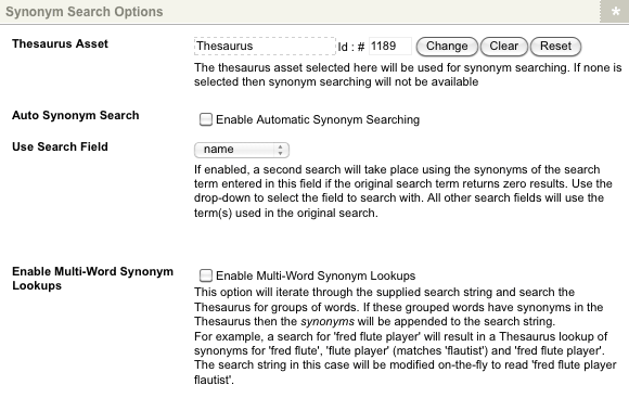 The Synonym Search Options section of the Details screen with Thesaurus